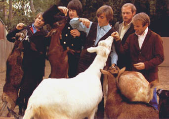 Pet Sounds Photograph