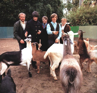 Pet Sounds photo session